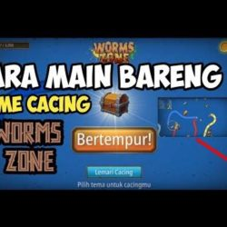 Cara mabar worms zone