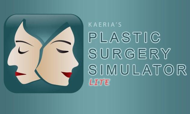 Plastic Surgery simulator