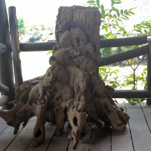 Elephant Stump