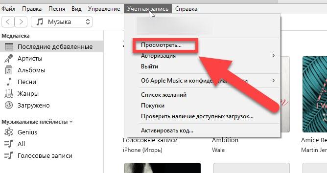iTunes пункт меню Просмотреть