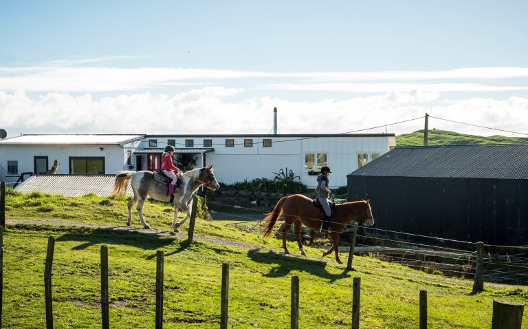 horse and pony trekkers at te horo equestrian