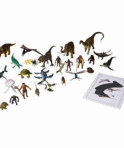 Animals and book for the black ribbon - Nienhuis Montessori