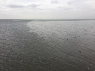 Cuxhaven erleben (15)