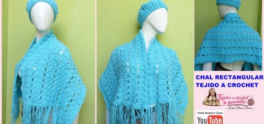 Tejido a crochet paso a paso gratis