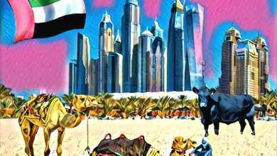 Photo of الإمارات تدعم العملات الرقمية وتسجل إستثمارات كبيرة خلال يناير وفبراير