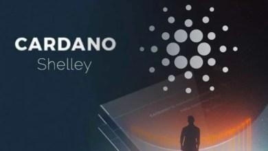 كاردانو - تقني نت عملات رقمية