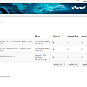 These two cpanel viruses are slowing your websites – this is how to fix them