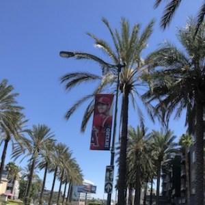 エンゼルススタジアム前の道路