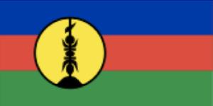 ニューカレドニアの国旗
