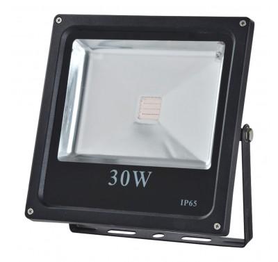 LED FD1003 30W RGB BL IP65