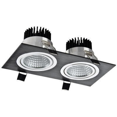 Metal Downlight 2x10W 4500K Black