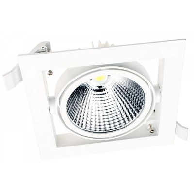Lighting Fixture DOWNLIGHT LED DL30 30W WHITE 6000K