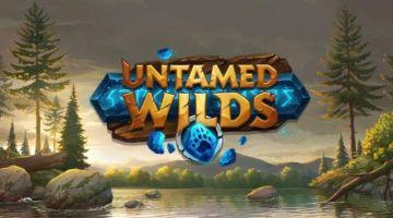 untamed wilds slot
