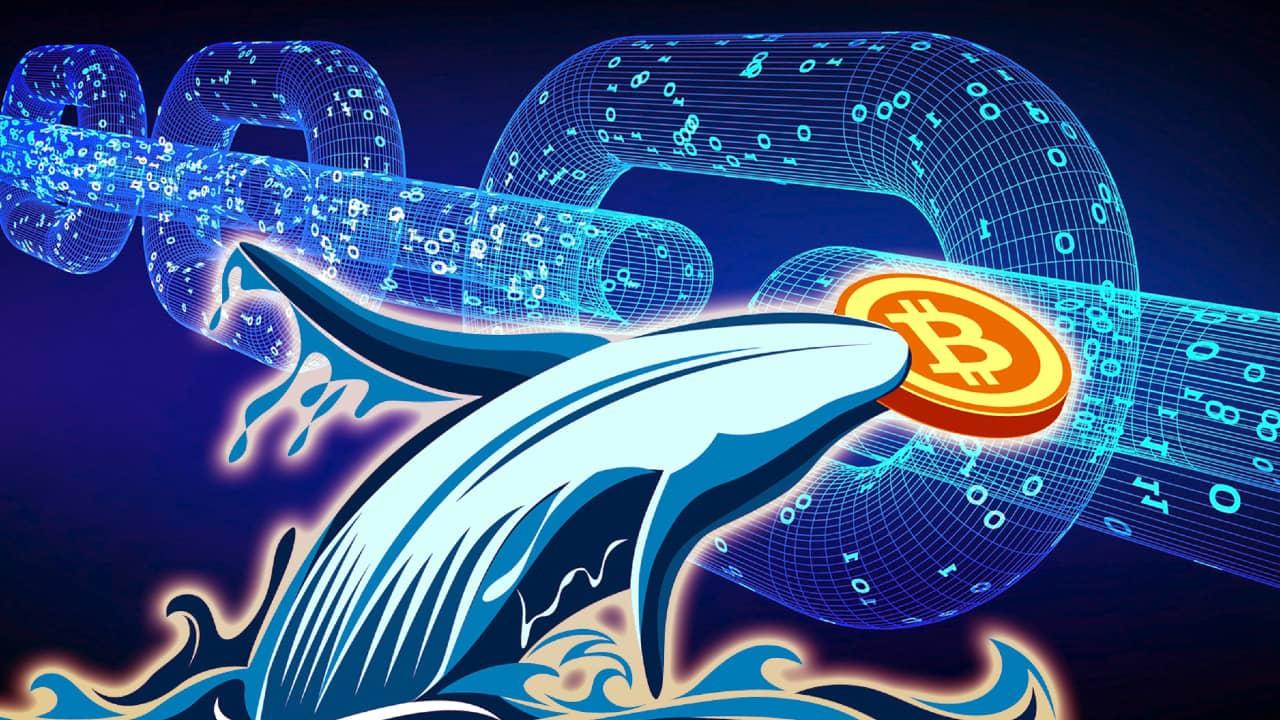 Bitcoin Transferi Nasıl Takip Edilir ?