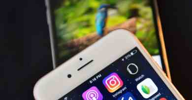 instagram fotoğraf ve video indirme