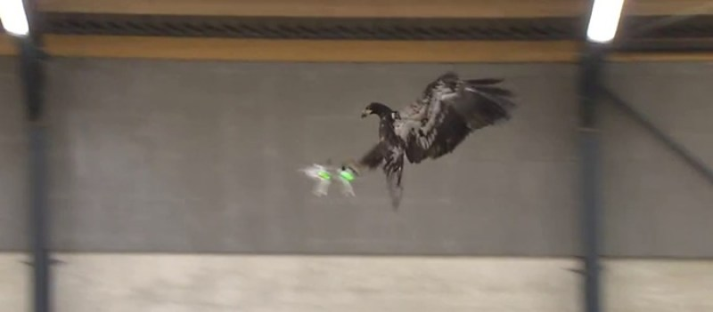 kartal-drone-dxd8