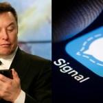 Elon Musk'ın Tweeti Signal'i Apple App Store'larda 1. Yaptı!