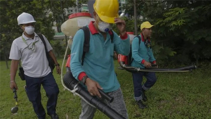 virusi vya zika