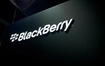 blackberry yapata faida