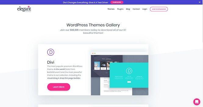 elegantthemes-wordpress-tema