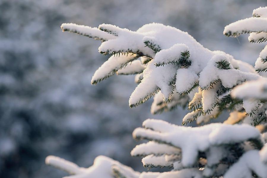 151228_hus30_vinter_landskap_snow_fujifilm_xt1_14mm_90mm_DSCF3367