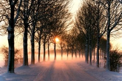 vinterdikt