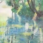 木漏れ日 (柳原泉) 382x297