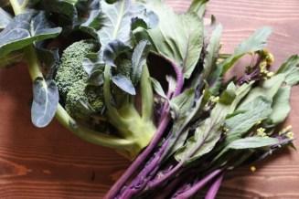 近郊農家さんのこだわり無農薬野菜など、可能な限り旨味のつまった旬の新鮮な野菜を使っています
