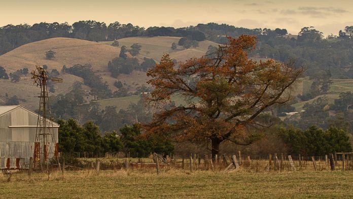australia-granja
