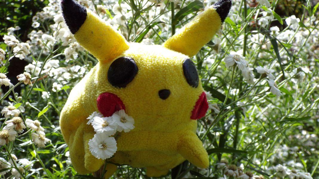 pokemon-novedades-esperadas