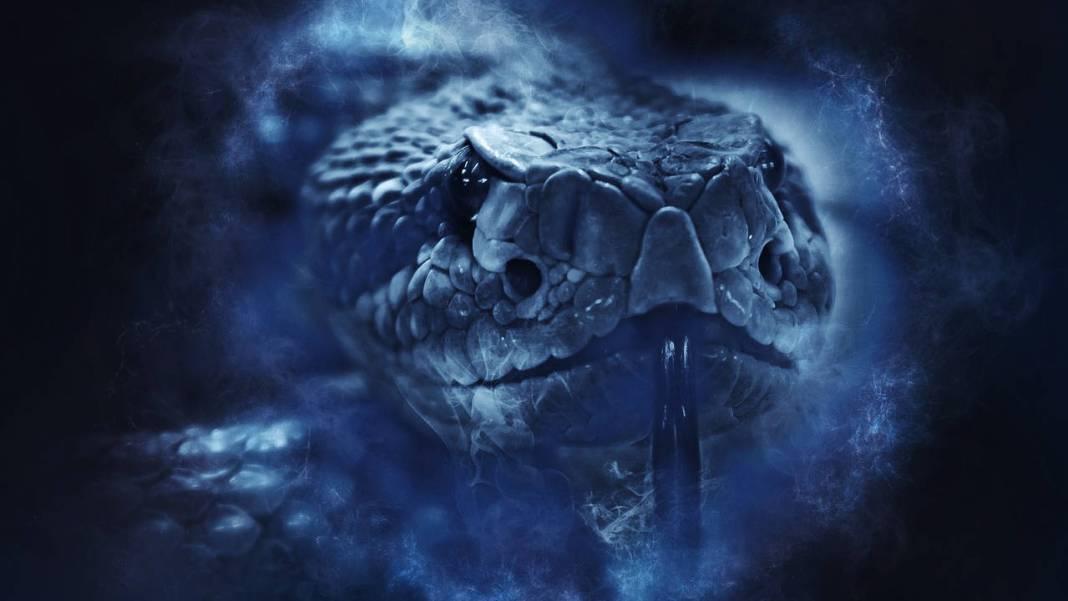 serpiente-2-cabezas