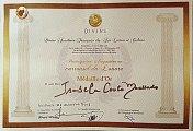 Certificado de Participação/ Louvre.