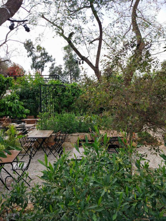 restaurants outside tel aviv