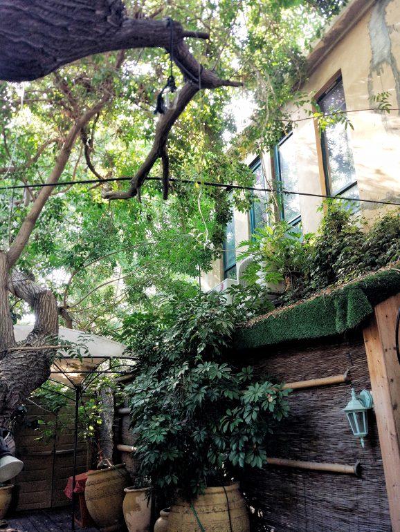 secret garden in tel aviv