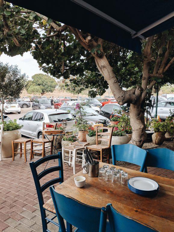 greco greek restaurant tel aviv