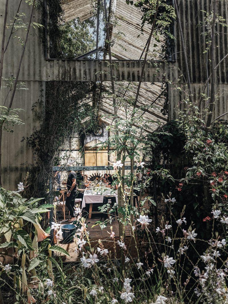 organic farm in israel