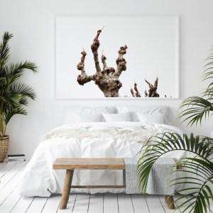 bald tree spain wall print