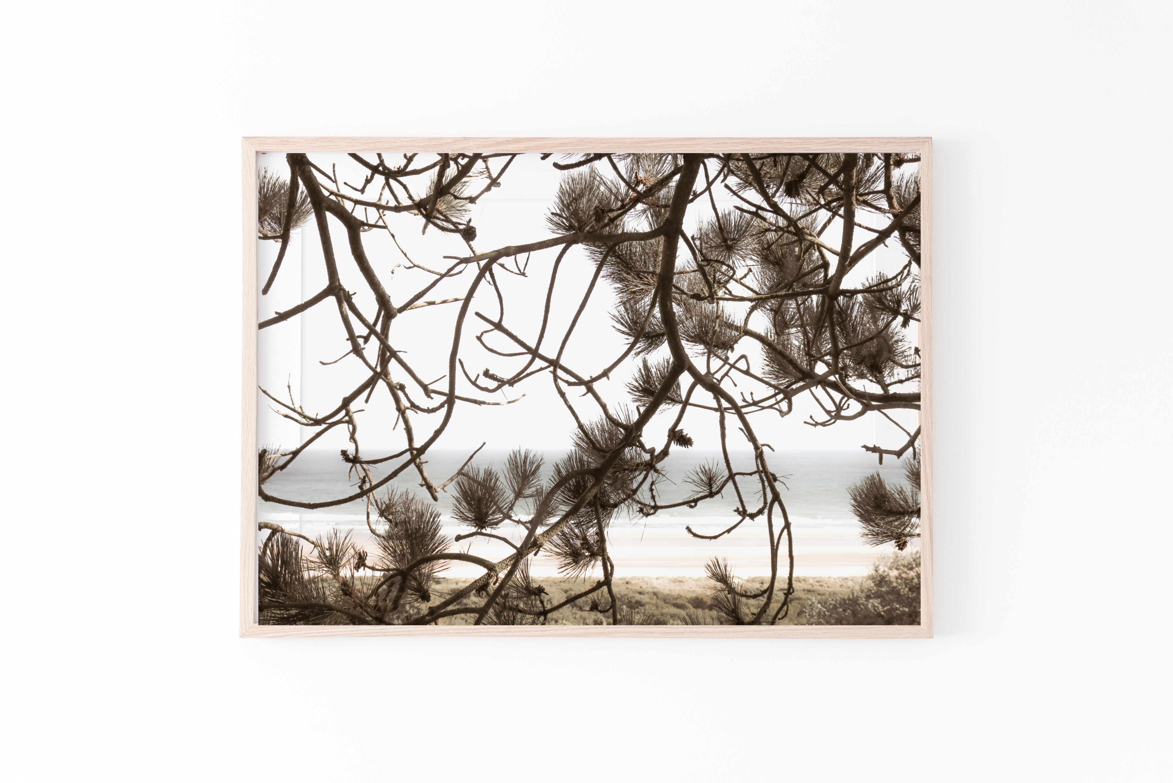 beach branches wall print