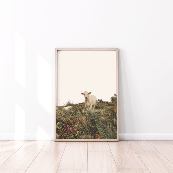 cow in the meadow wall print