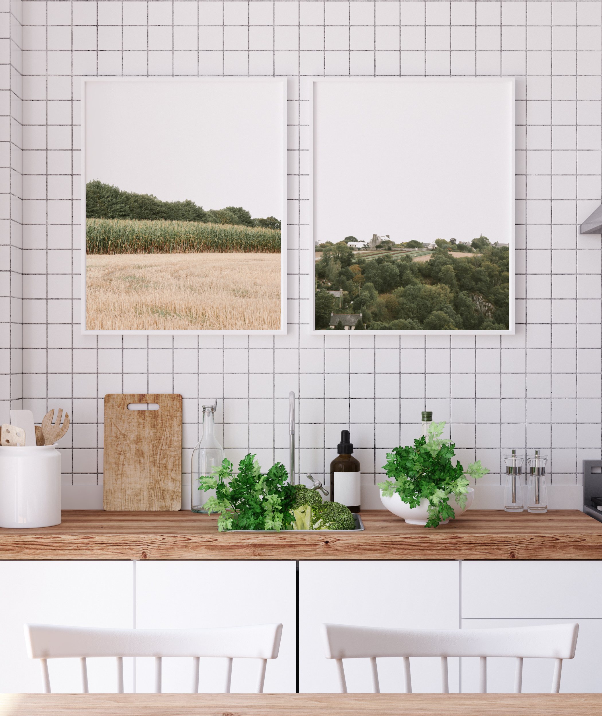 set of 2 wall prints france nature