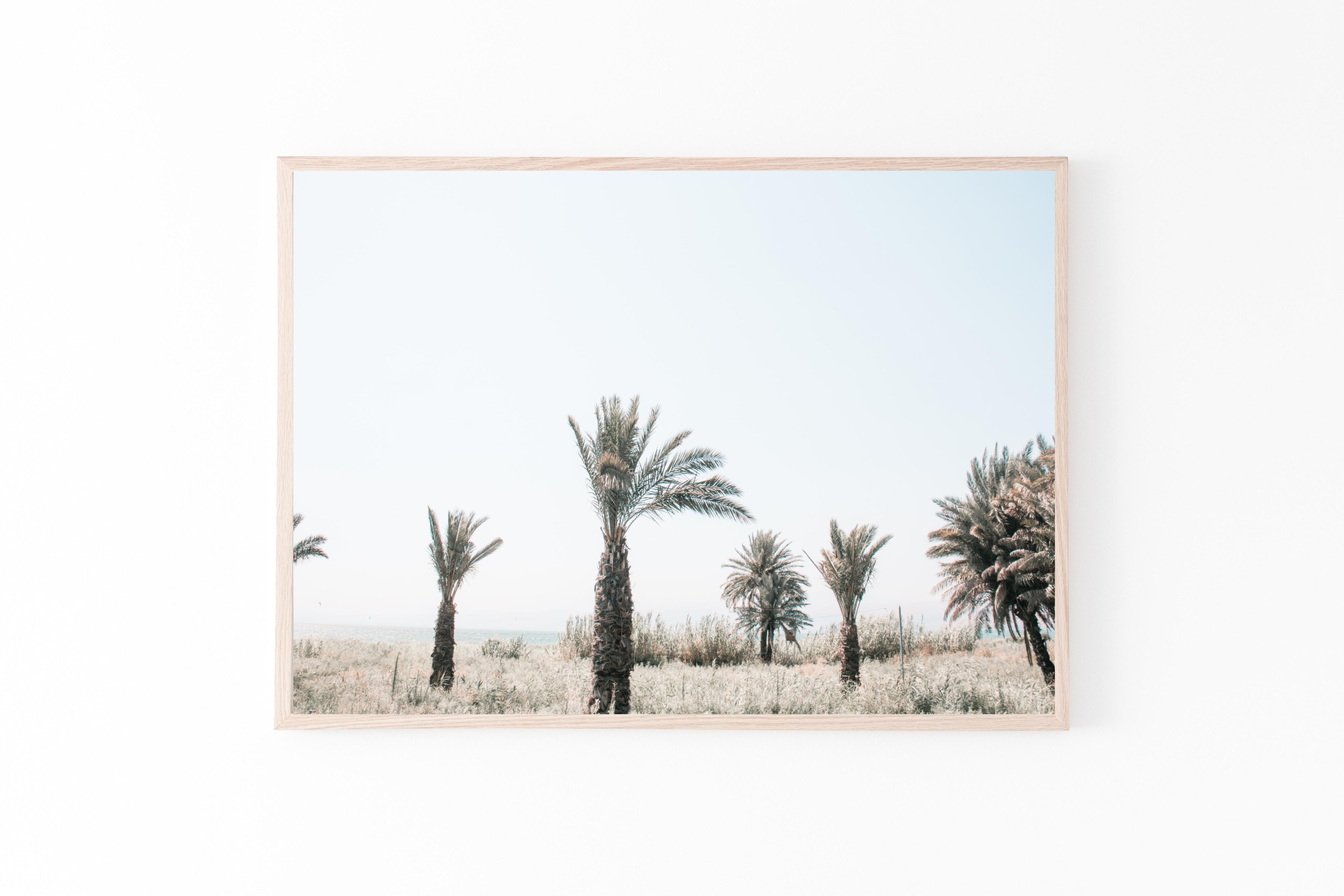 palm trees horizontal print