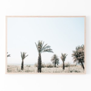 palm trees horizontal print