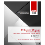 5G Security Strategy Considerations