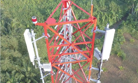 Indus Towers: Continues to deliver a strong performance