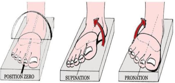 Les mouvements de torsion du pied 1