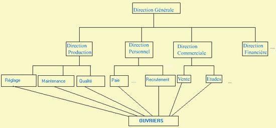 Structure Fonctionnelle