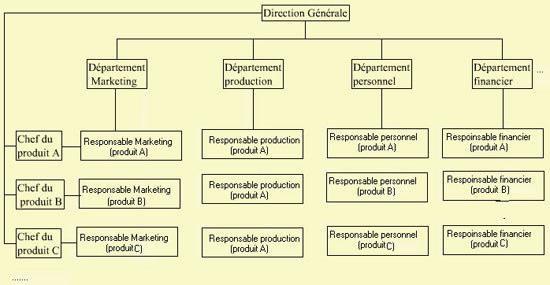 Structure Matricielle ou en Projet