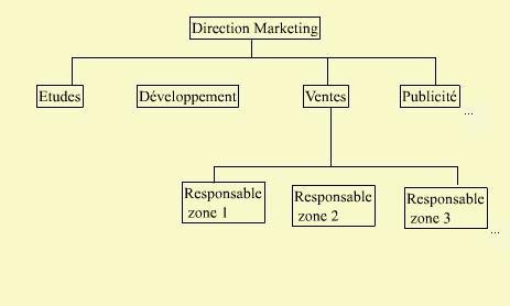 subdivision de l activite commerciale