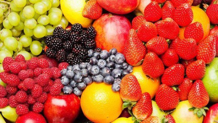 Image result for fruta