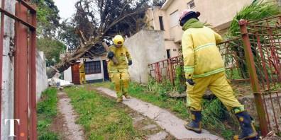 Los bomberos en plena tarea sobre la vivienda ubicada en Avenida 8 entre Paseo 106 y 107. (Fotos Ricardo Stinco)